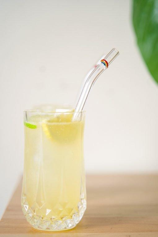 Rainbow accent glass drinking straw