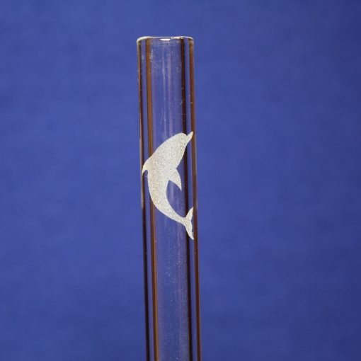 dolphin etched glass straw